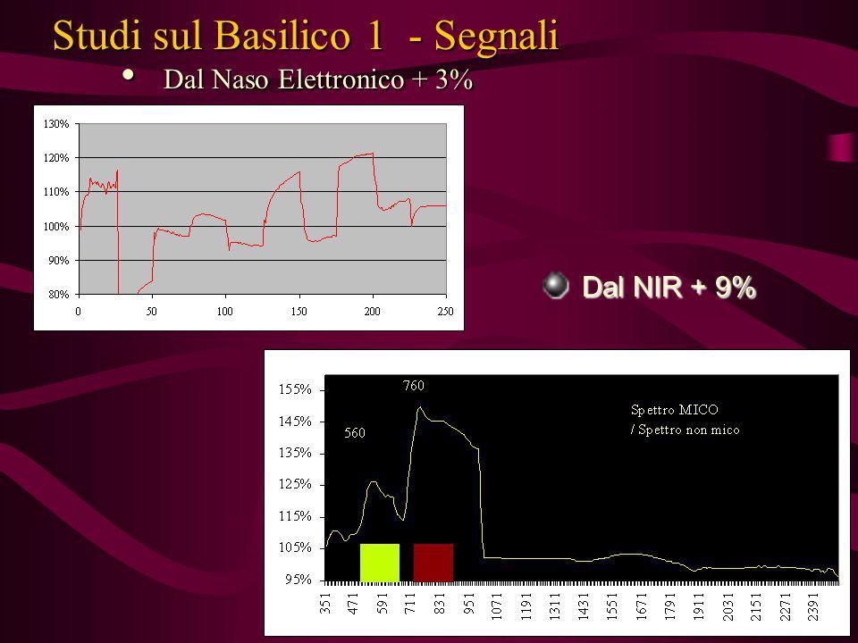 Studi sul Basilico 1 - Segnali Dal Naso Elettronico + 3% Dal Naso Elettronico + 3% Dal NIR + 9% Dal NIR + 9%