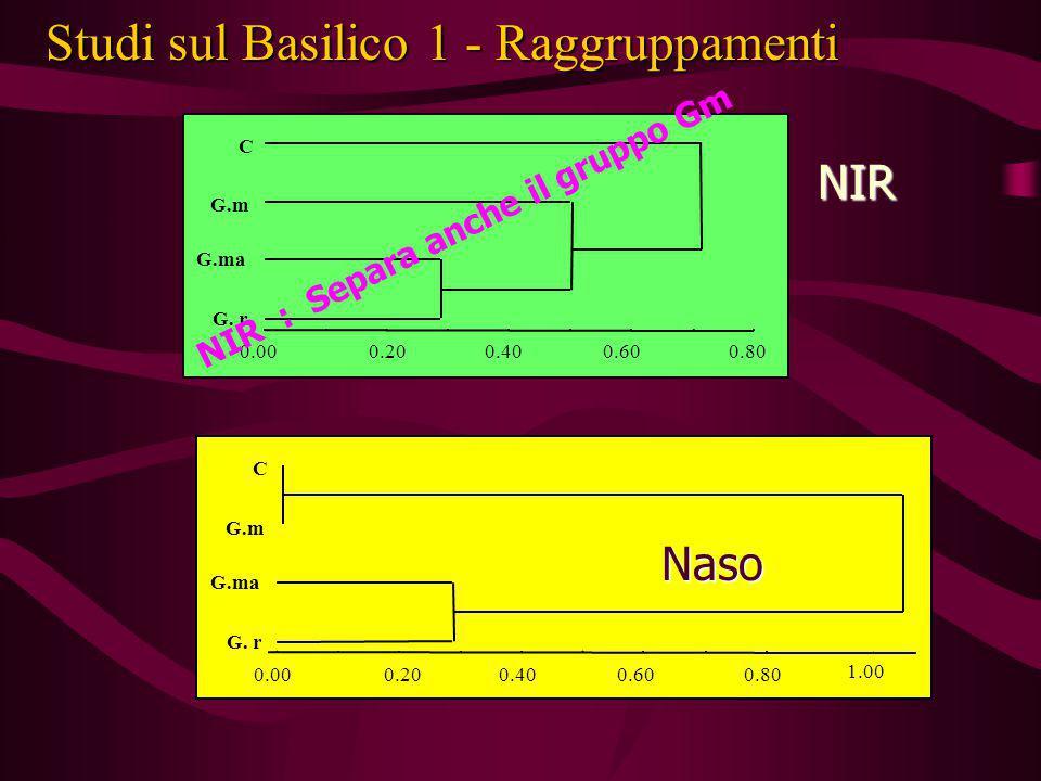 Studi sul Basilico 1 - Raggruppamenti 0.00 C G.m G.ma G. r 0.200.400.600.800.00 C G.m G.ma G. r 0.200.400.600.80 1.00 NIR Naso NIR : Separa anche il g