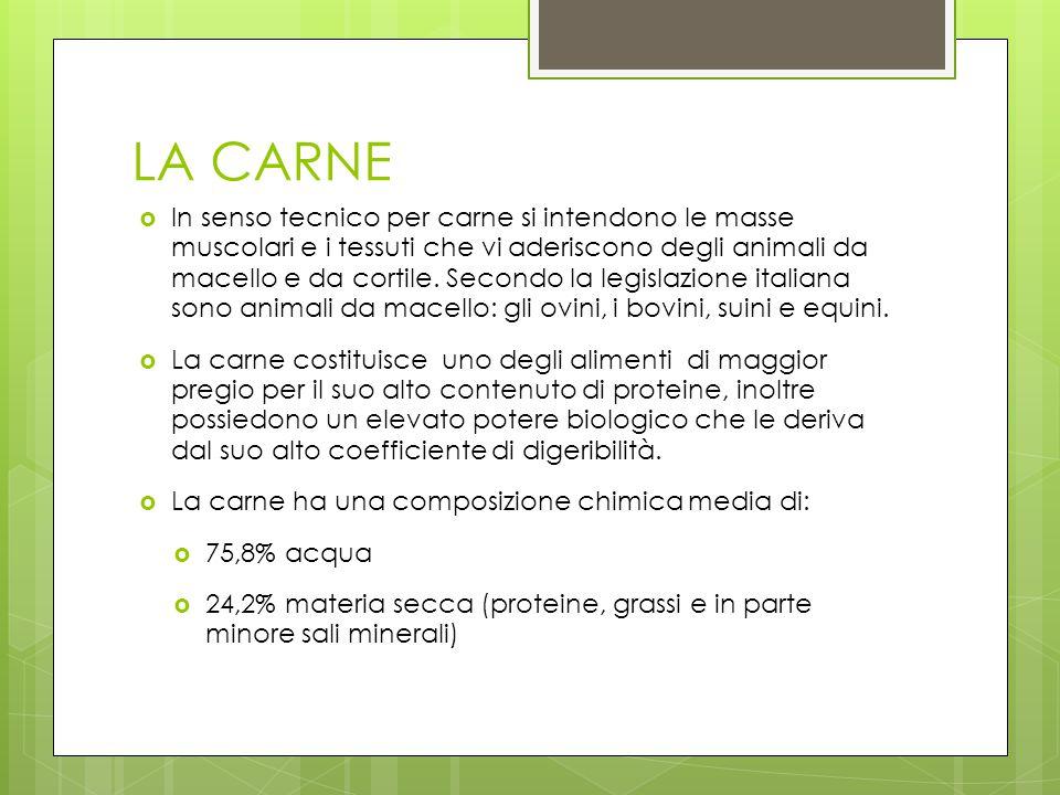 LA CARNE Armas Jaider Ciamballi Andrea Perego Alessandro Ravelli Lorenzo Classe 2A