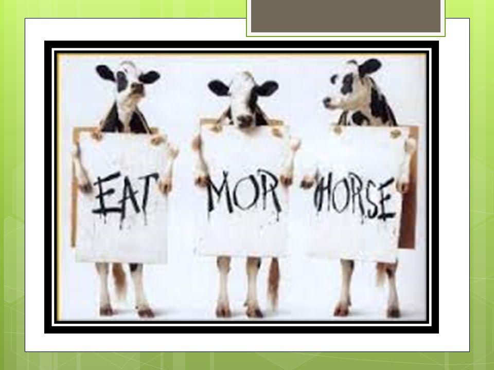 LA CARNE EQUINA  La carne equina (carne di cavallo) possiede elevati valori nutritivi, tra cui molto ferro e proteine  La carne equina è quella con