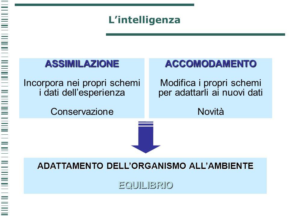 ASSIMILAZIONE Incorpora nei propri schemi i dati dell'esperienza Conservazione ADATTAMENTO DELL'ORGANISMO ALL'AMBIENTE EQUILIBRIO ACCOMODAMENTO Modifi