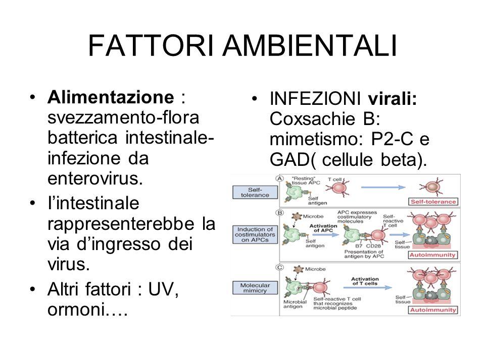 FATTORI AMBIENTALI Alimentazione : svezzamento-flora batterica intestinale- infezione da enterovirus. I'intestinale rappresenterebbe la via d'ingresso