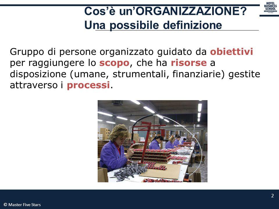 © Master Five Stars 13 L'organigramma è una rappresentazione grafica che visualizza la struttura organizzativa di un'azienda.