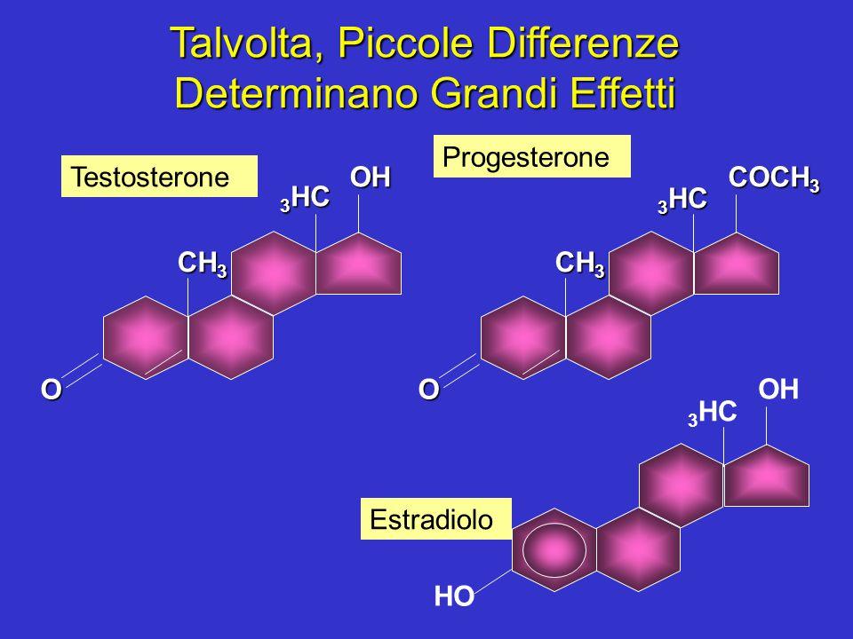 CH 3 O 3 HC OH CH 3 O 3 HC COCH 3 3 HC OH HO Testosterone Progesterone Estradiolo Talvolta, Piccole Differenze Determinano Grandi Effetti