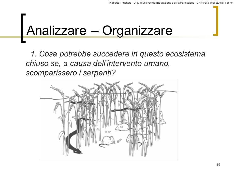 Roberto Trinchero – Dip. di Scienze dell'Educazione e della Formazione – Università degli studi di Torino 90 Analizzare – Organizzare 1. Cosa potrebbe