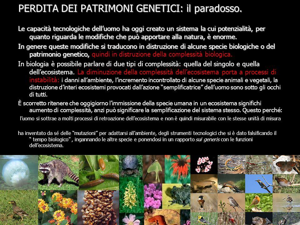 PERDITA DEI PATRIMONI GENETICI: il paradosso.