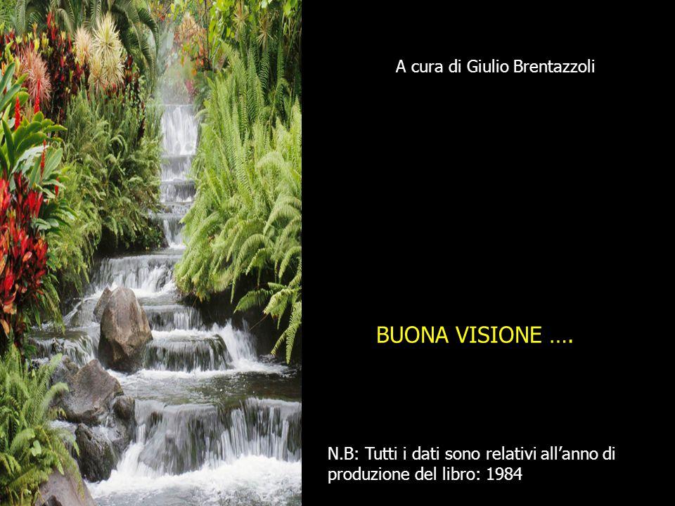 A cura di Giulio Brentazzoli BUONA VISIONE ….