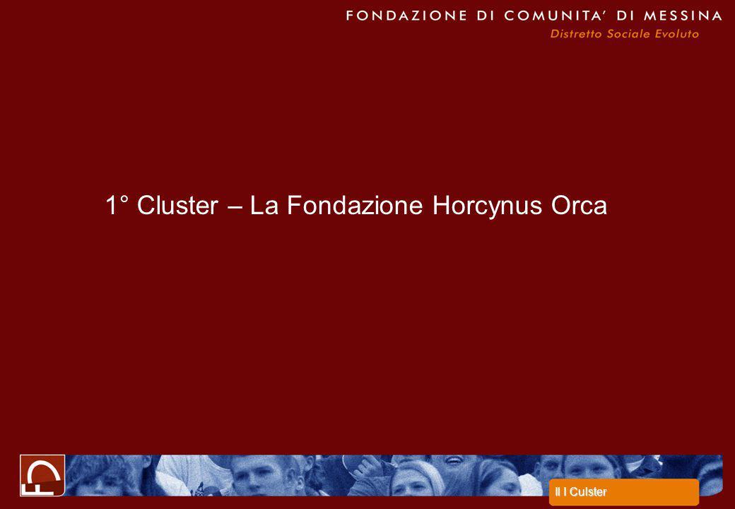 1° Cluster – La Fondazione Horcynus Orca Il I Culster