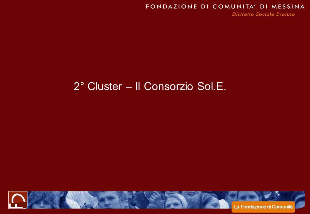 2° Cluster – Il Consorzio Sol.E. La Fondazione di Comunità