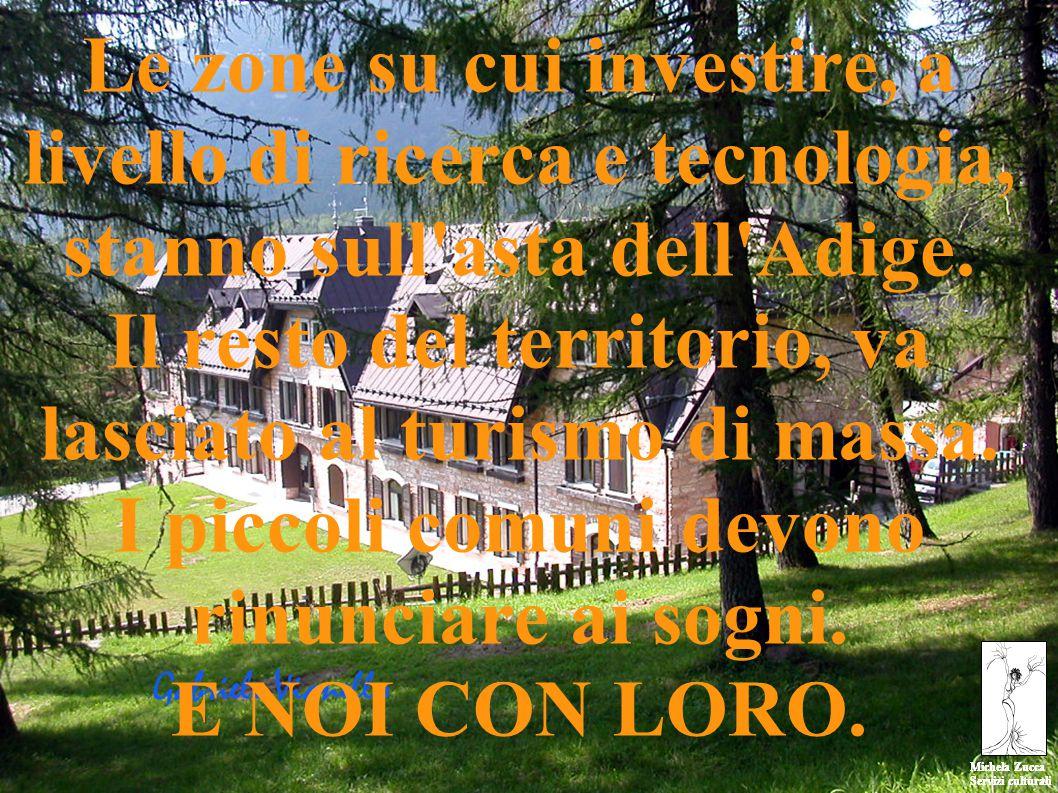 Michela Zucca Servizi culturali Michela Zucca Servizi culturali Le zone su cui investire, a livello di ricerca e tecnologia, stanno sull asta dell Adige.
