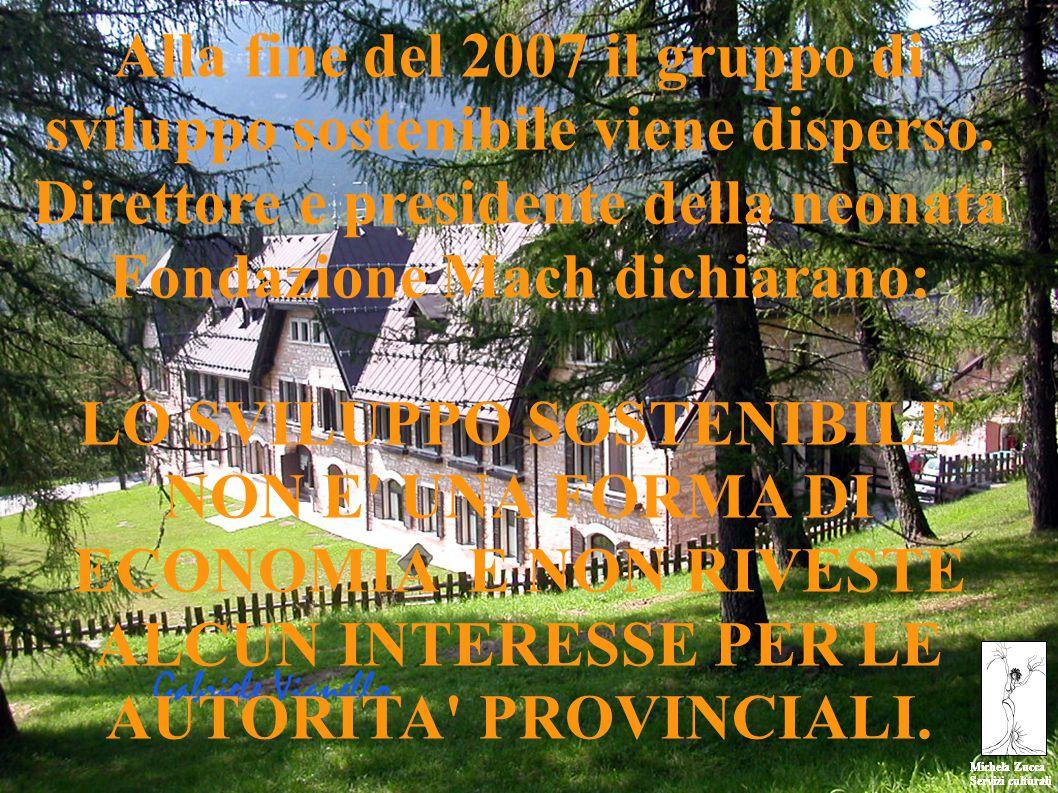 Michela Zucca Servizi culturali Michela Zucca Servizi culturali Alla fine del 2007 il gruppo di sviluppo sostenibile viene disperso.