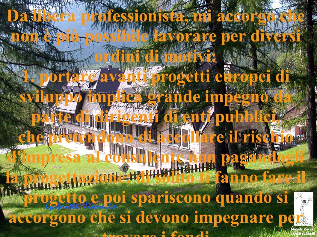 Michela Zucca Servizi culturali Michela Zucca Servizi culturali Da libera professionista, mi accorgo che non è più possibile lavorare per diversi ordini di motivi: 1.