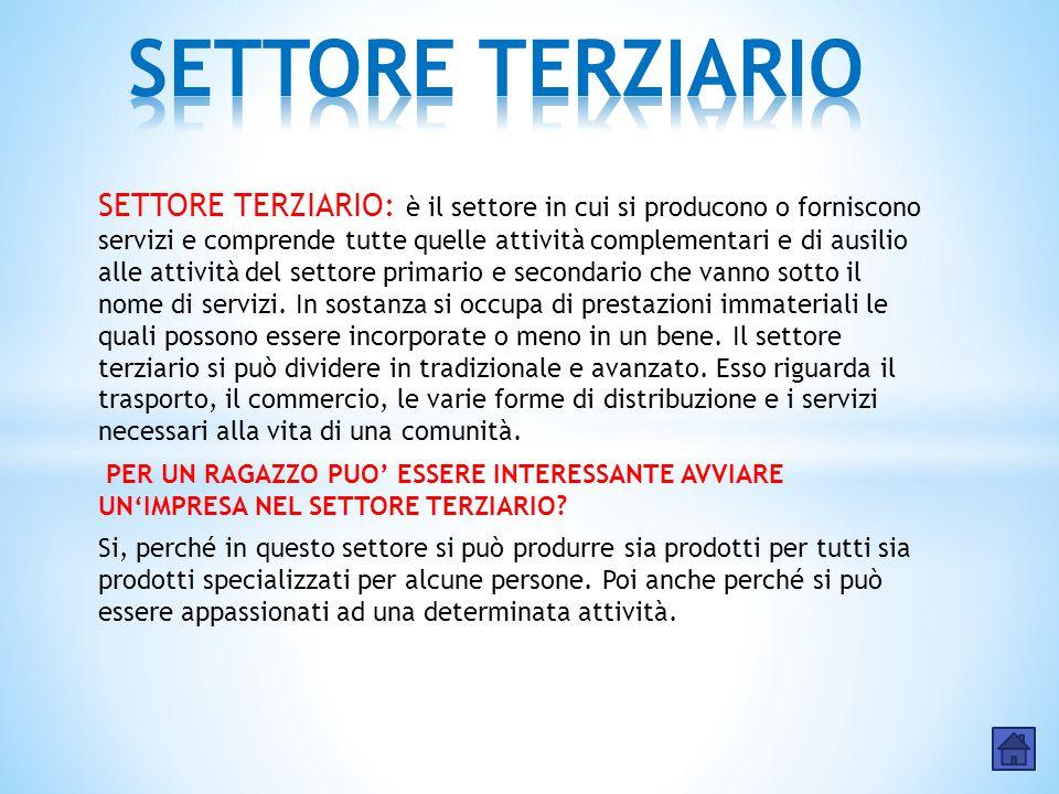 SETTORE TERZIARIO: è il settore in cui si producono o forniscono servizi e comprende tutte quelle attività complementari e di ausilio alle attività de