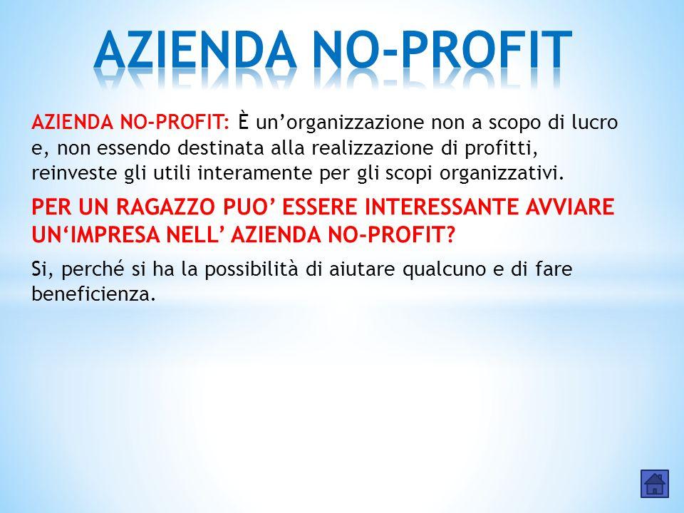 AZIENDA NO-PROFIT: È un'organizzazione non a scopo di lucro e, non essendo destinata alla realizzazione di profitti, reinveste gli utili interamente p