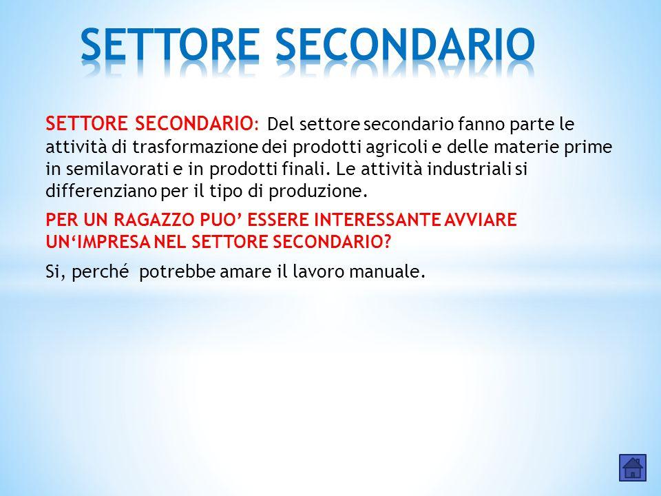 SETTORE SECONDARIO : Del settore secondario fanno parte le attività di trasformazione dei prodotti agricoli e delle materie prime in semilavorati e in