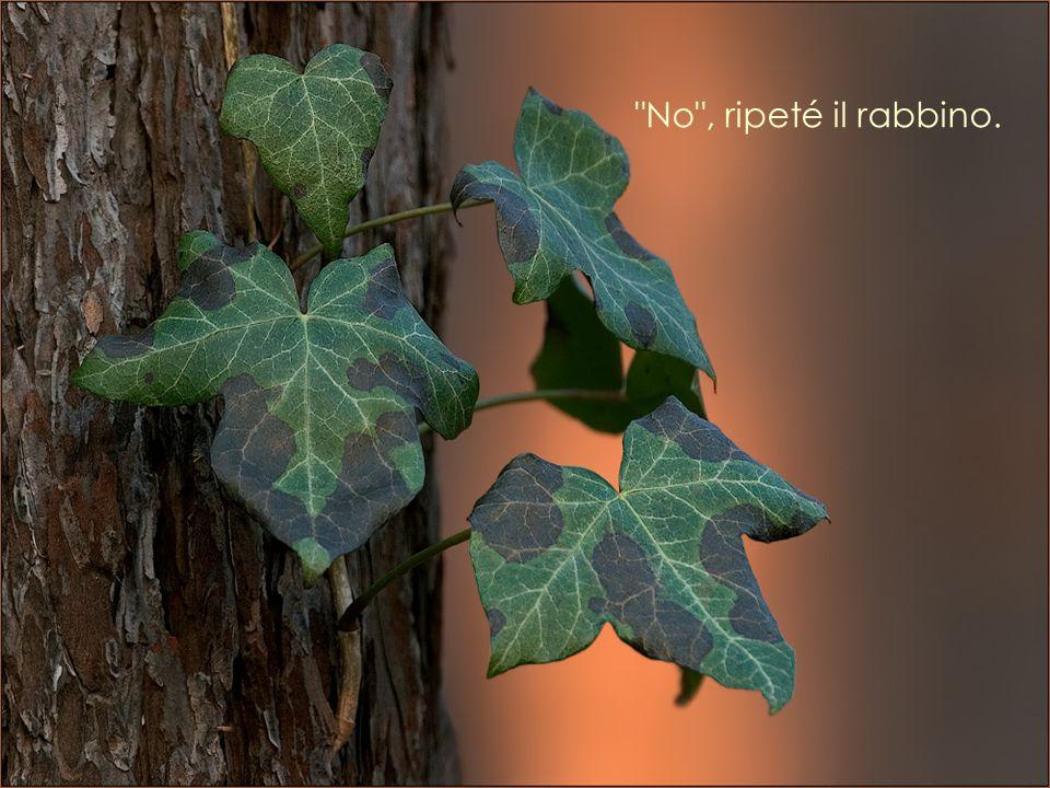 Quando si distingue un albero di datteri da un albero di fichi?