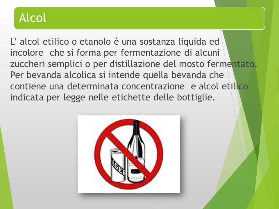 Alcol L' alcol etilico o etanolo è una sostanza liquida ed incolore che si forma per fermentazione di alcuni zuccheri semplici o per distillazione del