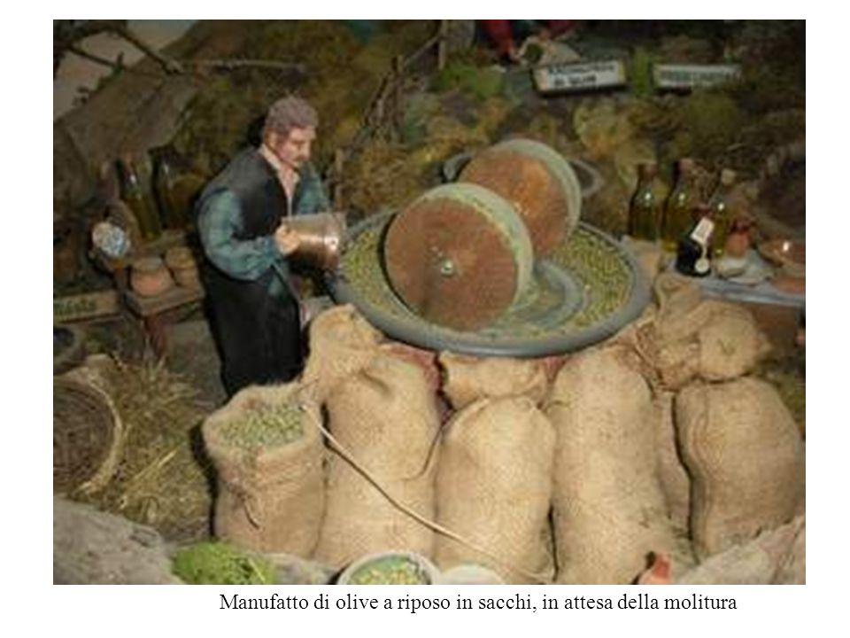 Manufatto di olive a riposo in sacchi, in attesa della molitura