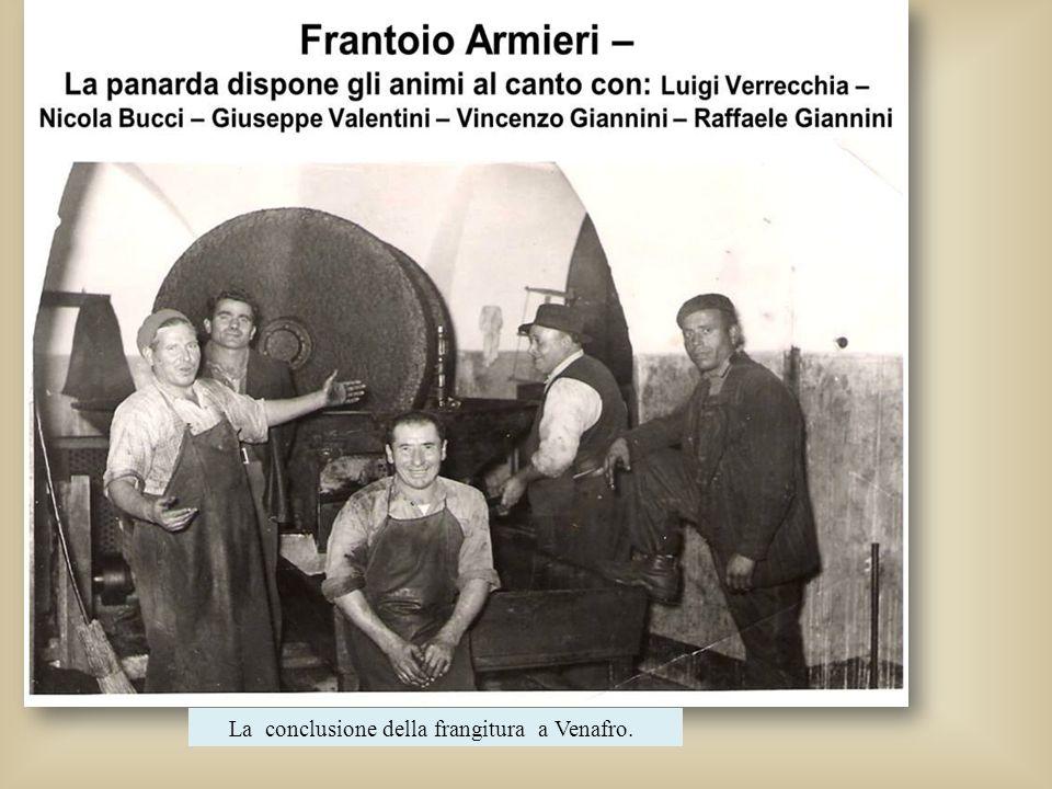 La conclusione della frangitura a Venafro.