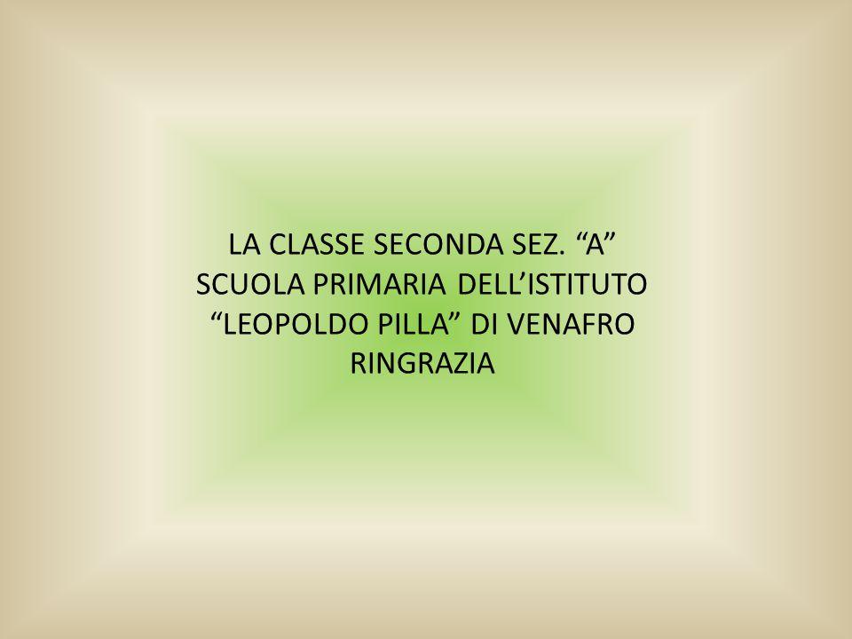 """LA CLASSE SECONDA SEZ. """"A"""" SCUOLA PRIMARIA DELL'ISTITUTO """"LEOPOLDO PILLA"""" DI VENAFRO RINGRAZIA"""
