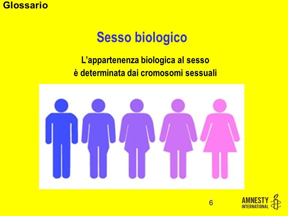 Sesso biologico L'appartenenza biologica al sesso è determinata dai cromosomi sessuali 6 Glossario