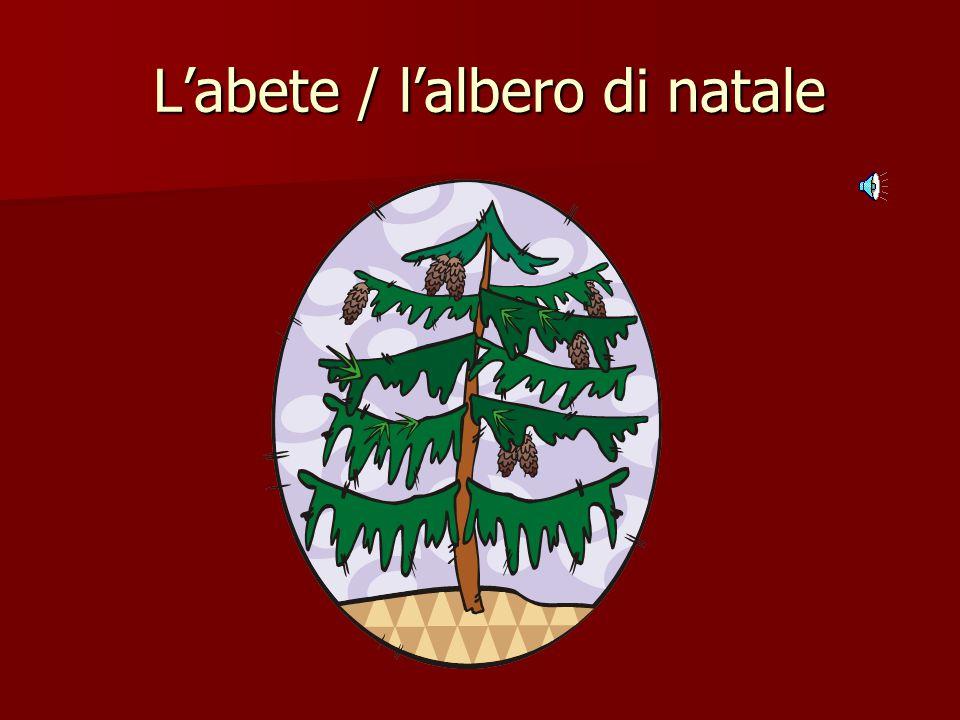 L'abete / l'albero di natale L'abete / l'albero di natale