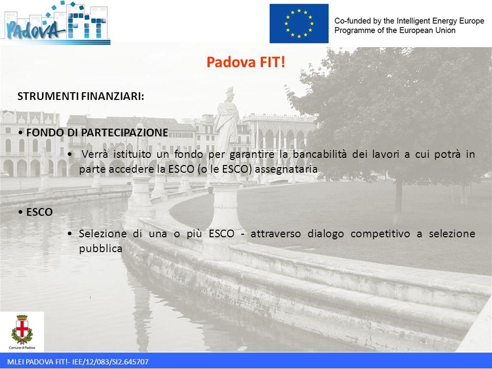MLEI PADOVA FIT!- IEE/12/083/SI2.645707 STRUMENTI FINANZIARI: FONDO DI PARTECIPAZIONE Verrà istituito un fondo per garantire la bancabilità dei lavori