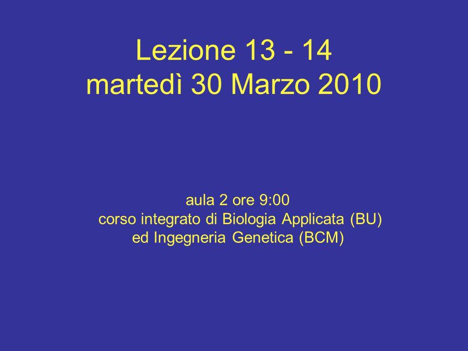 Lezione 13 - 14 martedì 30 Marzo 2010 aula 2 ore 9:00 corso integrato di Biologia Applicata (BU) ed Ingegneria Genetica (BCM)
