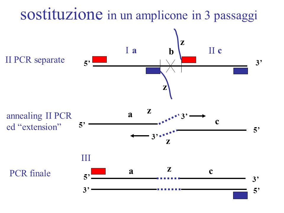 in un amplicone in 3 passaggi z 3' aI c b z z 5' II III annealing II PCR ed extension II PCR separate z a c 3' 5' ac z 3' 5' 3' 5' PCR finale sostituzione