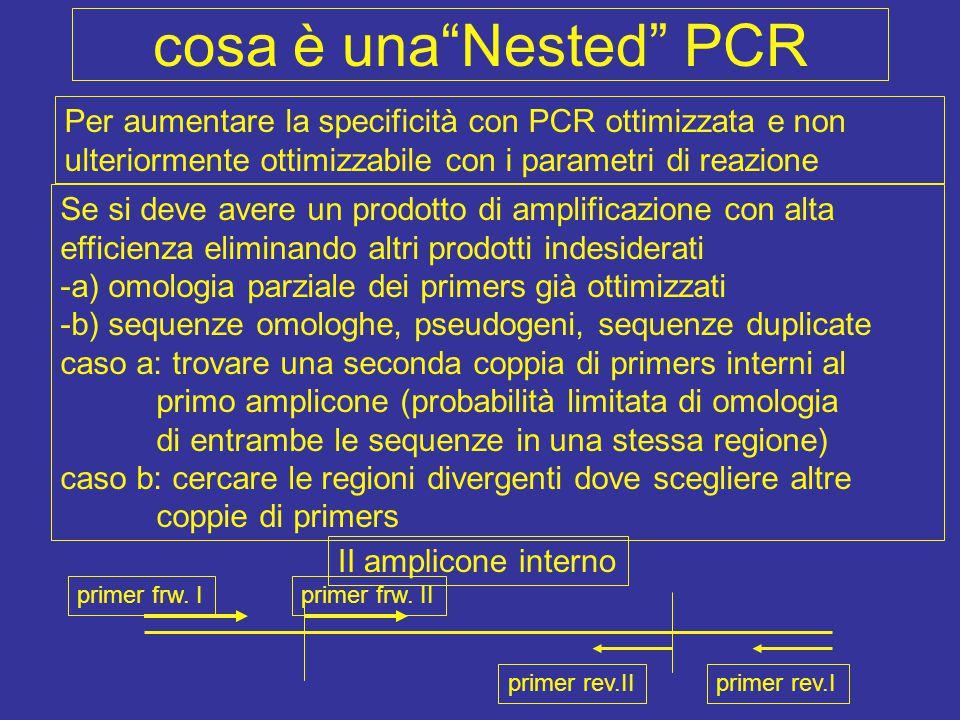 appaiamento PCR I + II 5' 3' 5' 3' 5' 3' 5' 3' 5' 3' X X 5' elongation solo di due filamenti impossible mission impossible possible