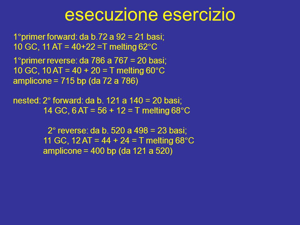 esecuzione esercizio 1°primer forward: da b.72 a 92 = 21 basi; 10 GC, 11 AT = 40+22 =T melting 62°C 1°primer reverse: da 786 a 767 = 20 basi; 10 GC, 10 AT = 40 + 20 = T melting 60°C amplicone = 715 bp (da 72 a 786) nested: 2° forward: da b.