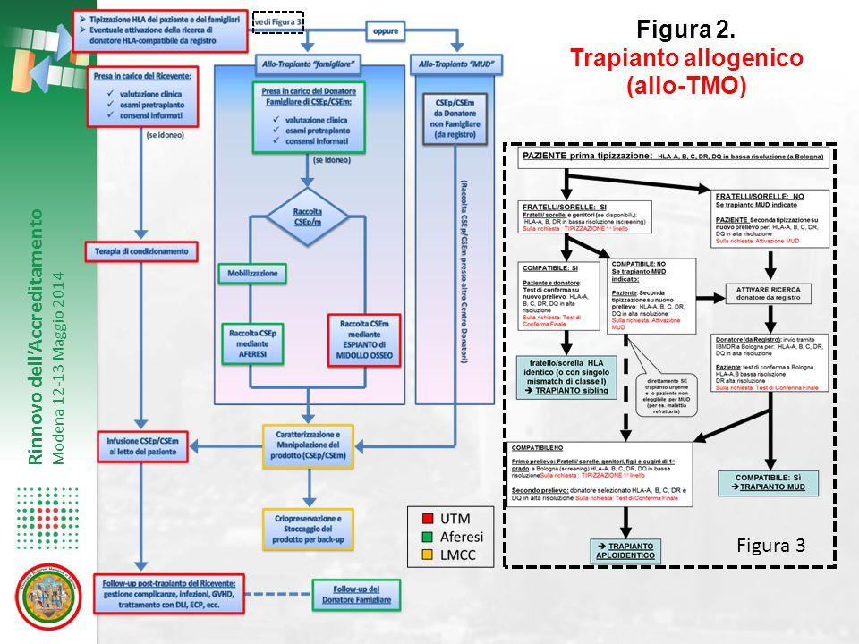 Rinnovo dell'Accreditamento Modena 12-13 Maggio 2014 Figura 2. Trapianto allogenico (allo-TMO) Figura 3