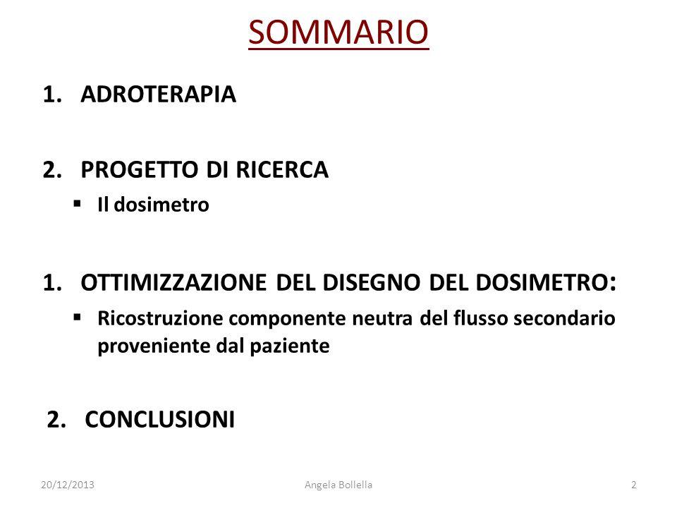 SOMMARIO 1.ADROTERAPIA 2.PROGETTO DI RICERCA  Il dosimetro 1.OTTIMIZZAZIONE DEL DISEGNO DEL DOSIMETRO :  Ricostruzione componente neutra del flusso