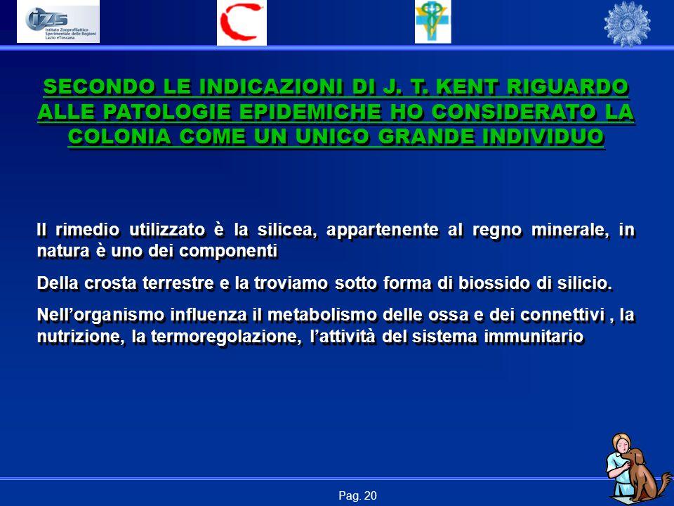 Pag. 20 Il rimedio utilizzato è la silicea, appartenente al regno minerale, in natura è uno dei componenti Della crosta terrestre e la troviamo sotto
