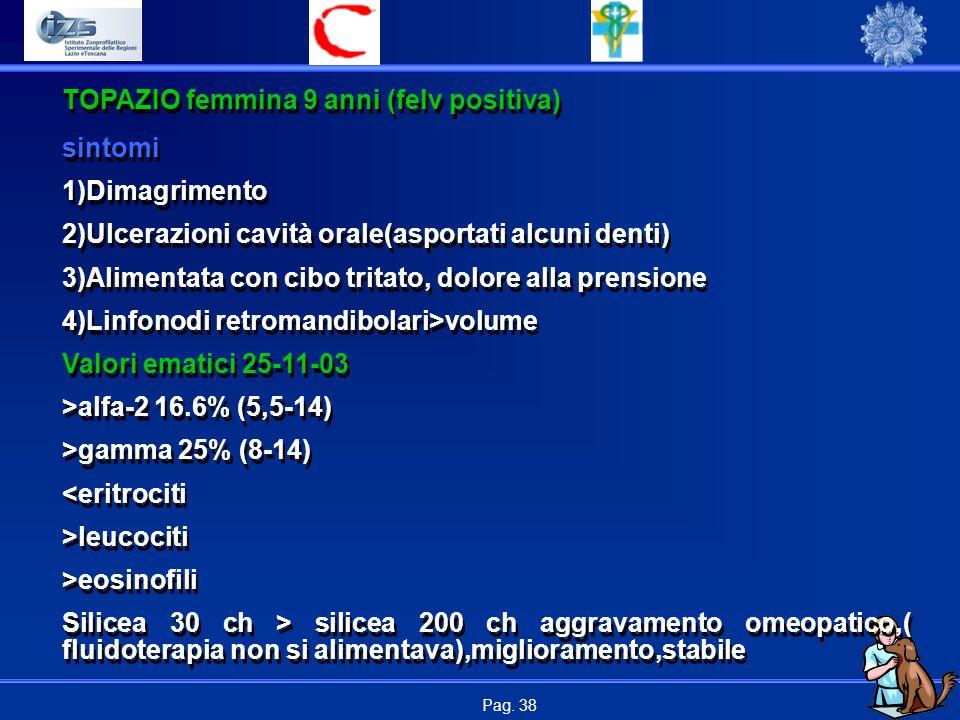 Pag. 38 TOPAZIO femmina 9 anni (felv positiva) sintomi 1)Dimagrimento 2)Ulcerazioni cavità orale(asportati alcuni denti) 3)Alimentata con cibo tritato