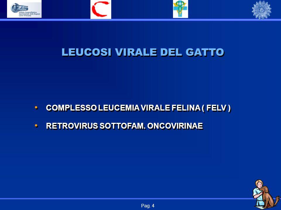 Pag.4 LEUCOSI VIRALE DEL GATTO COMPLESSO LEUCEMIA VIRALE FELINA ( FELV ) RETROVIRUS SOTTOFAM.