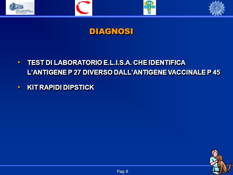 Pag.29 ANALOGIE RINOTRACHEITE INFETTIVA-SILICEA 1.