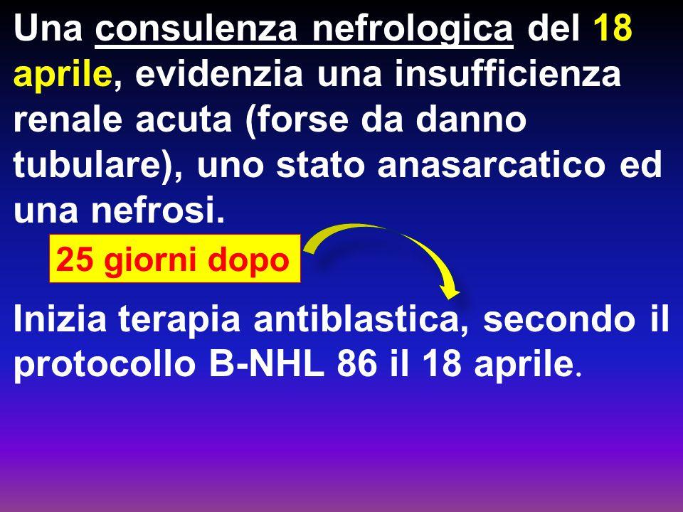 Una consulenza nefrologica del 18 aprile, evidenzia una insufficienza renale acuta (forse da danno tubulare), uno stato anasarcatico ed una nefrosi. I