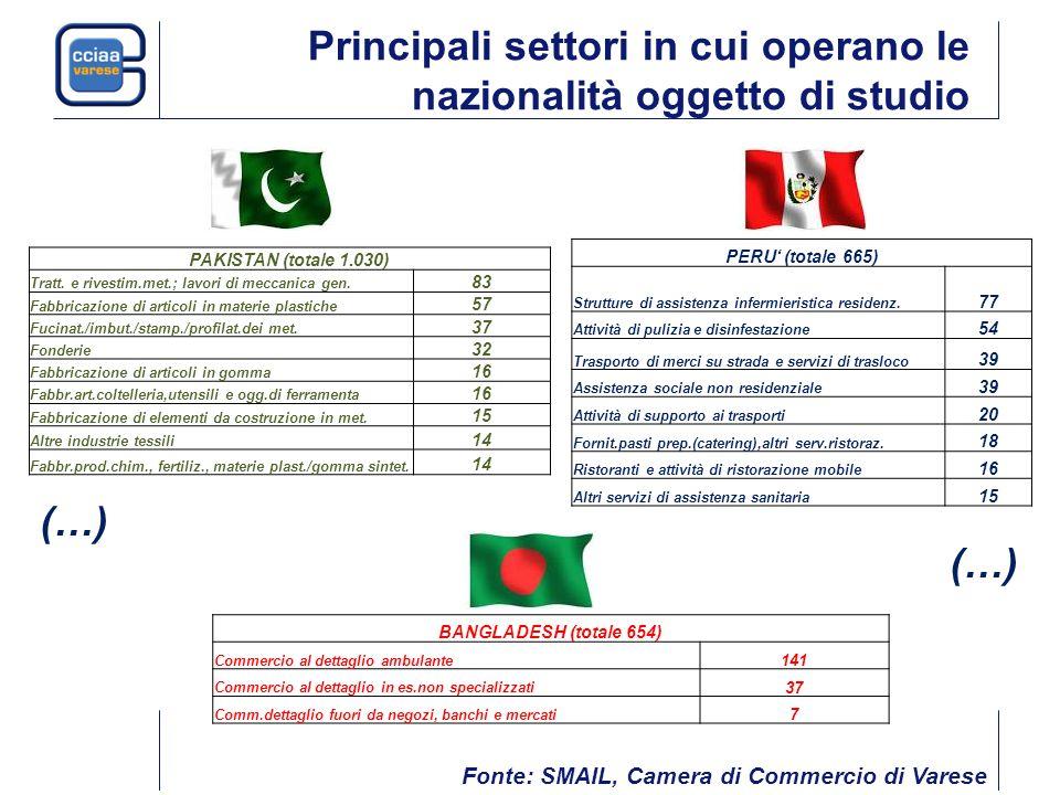 Principali settori in cui operano le nazionalità oggetto di studio PERU' (totale 665) Strutture di assistenza infermieristica residenz.