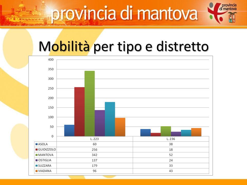 Mobilità per tipo e distretto