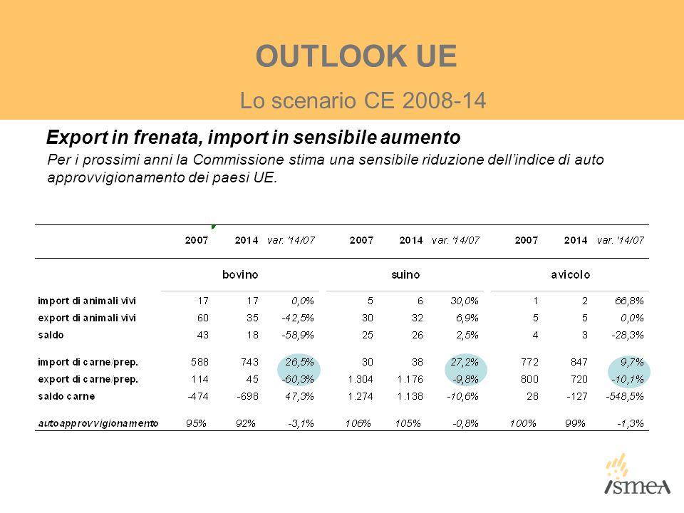 Export in frenata, import in sensibile aumento Lo scenario CE 2008-14 OUTLOOK UE Per i prossimi anni la Commissione stima una sensibile riduzione dell