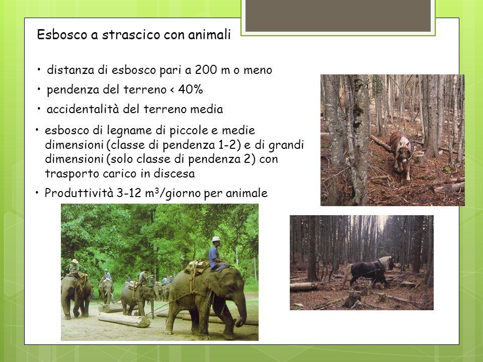 distanza di esbosco pari a 200 m o meno pendenza del terreno < 40% accidentalità del terreno media Esbosco a strascico con animali esbosco di legname