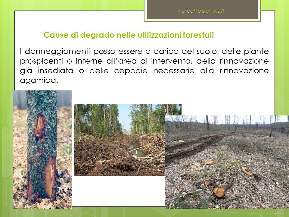 Cause di degrado nelle utilizzazioni forestali r.picchio@unitus.it I danneggiamenti posso essere a carico del suolo, delle piante prospicenti o intern