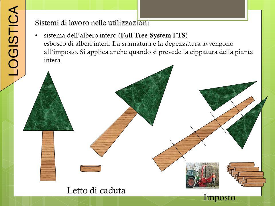 Sistemi di lavoro nelle utilizzazioni sistema dell'albero intero ( Full Tree System FTS ) esbosco di alberi interi. La sramatura e la depezzatura avve