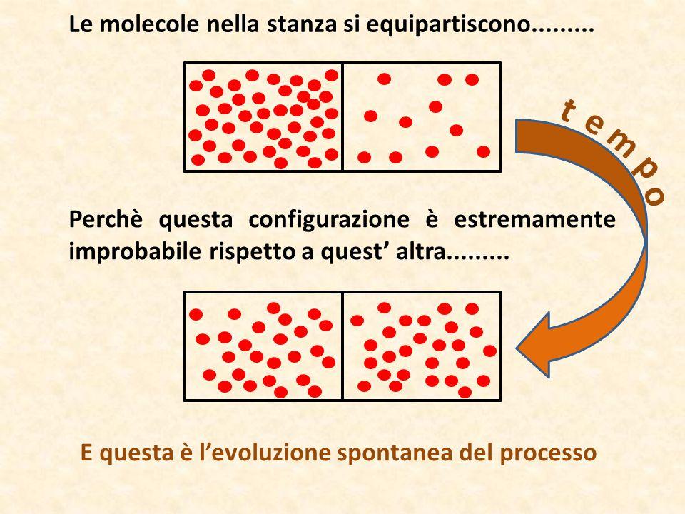 Le molecole nella stanza si equipartiscono......... Perchè questa configurazione è estremamente improbabile rispetto a quest' altra......... E questa