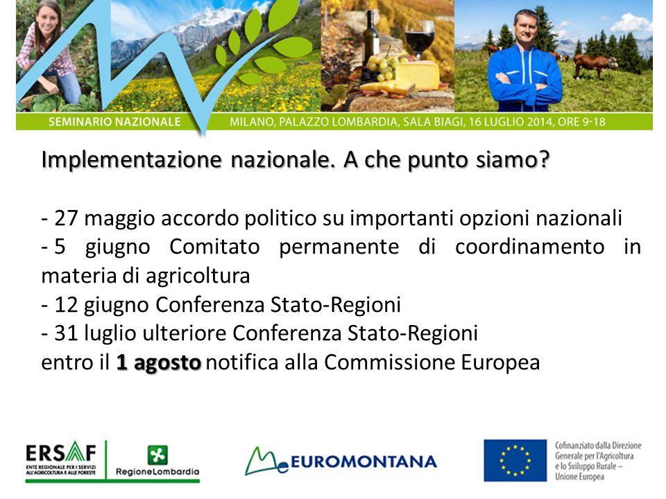 Implementazione nazionale. A che punto siamo? - 27 maggio accordo politico su importanti opzioni nazionali - 5 giugno Comitato permanente di coordinam