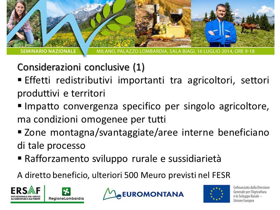 Considerazioni conclusive (1)  Effetti redistributivi importanti tra agricoltori, settori produttivi e territori  Impatto convergenza specifico per