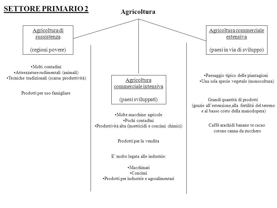 Agricoltura Agricoltura di sussistenza (regioni povere) Agricoltura commerciale intensiva (paesi sviluppati) Agricoltura commerciale estensiva (paesi