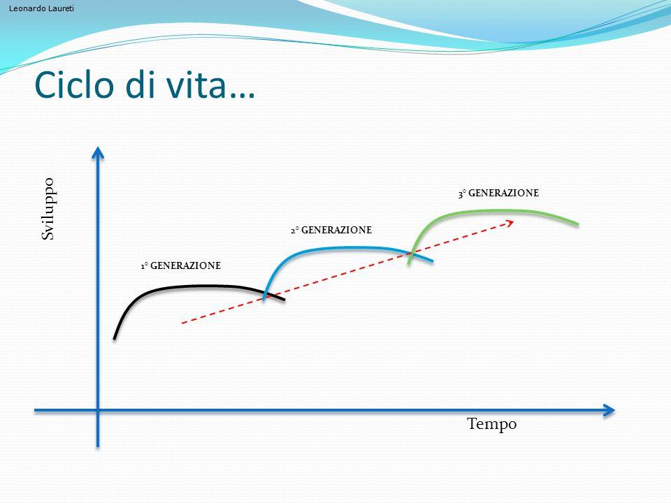 Ciclo di vita… Tempo Sviluppo 1° GENERAZIONE 2° GENERAZIONE 3° GENERAZIONE