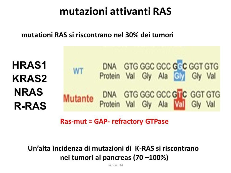 mutazioni attivanti RAS mutationi RAS si riscontrano nel 30% dei tumori HRAS1 KRAS2 NRAS Ras-mut = GAP- refractory GTPase Un'alta incidenza di mutazioni di K-RAS si riscontrano nei tumori al pancreas (70 –100%) R-RAS nabissi 14